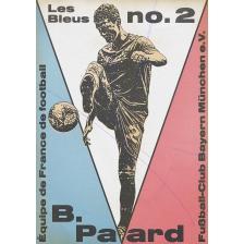 Pavard 3